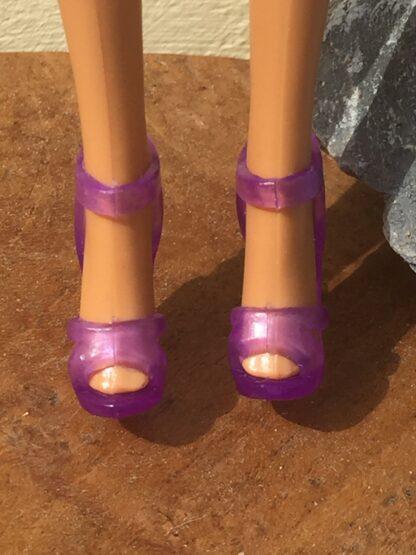 Schoentjes Puck..